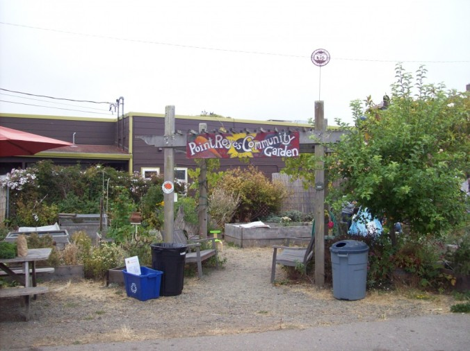 Point Reyes Community Garden